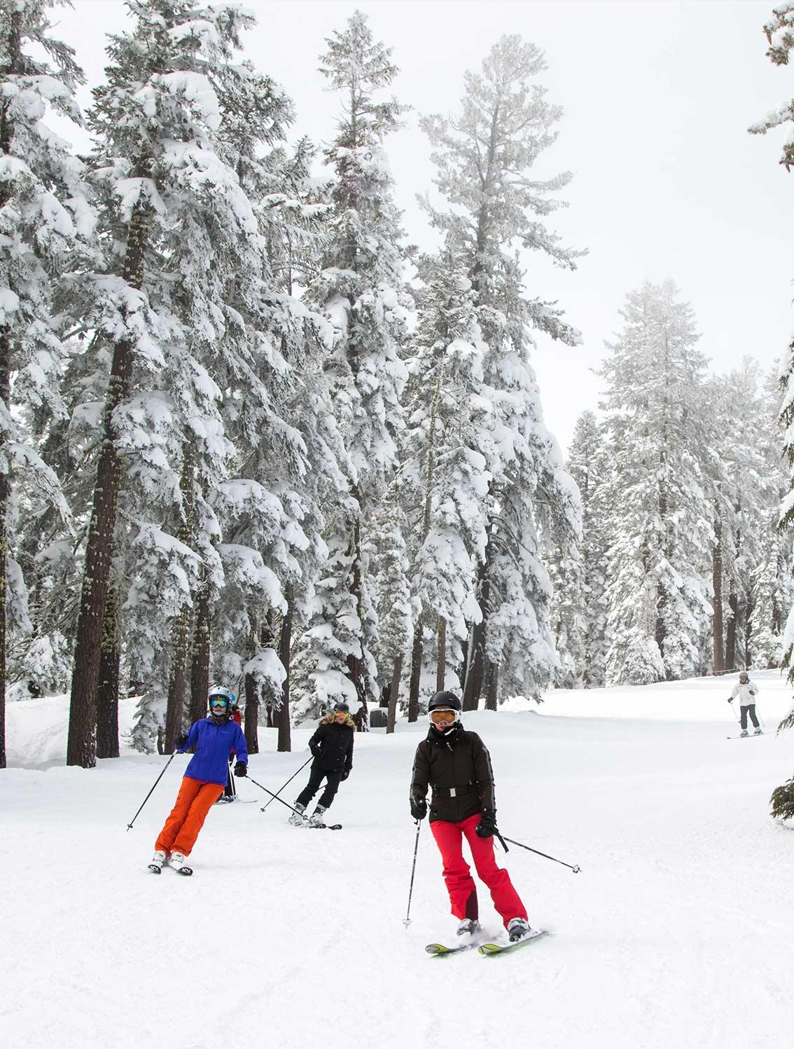 Tahoe Family Ski Group