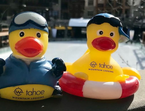 Dub Our Duckies Contest – Win Up To $400